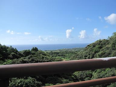 海も綺麗~(≧▽≦)♪