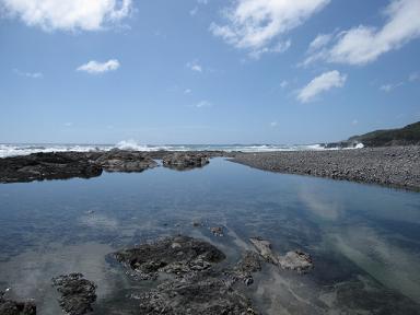 海岸は波どっぱーん!タイドプールは小さい魚の楽園でした♪