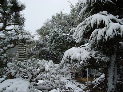 元日の雪景色
