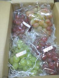 箱入りブドウ
