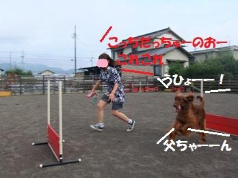 DSCF1379.jpg