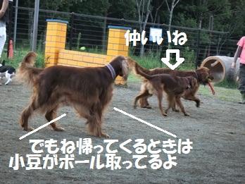 DSCF1423.jpg