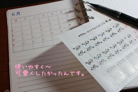 10_20100221180723.jpg