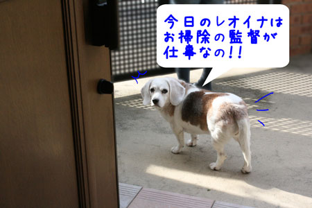 1_20091023154333.jpg