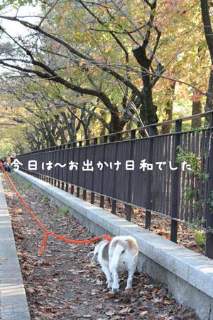 1_20091031203231.jpg