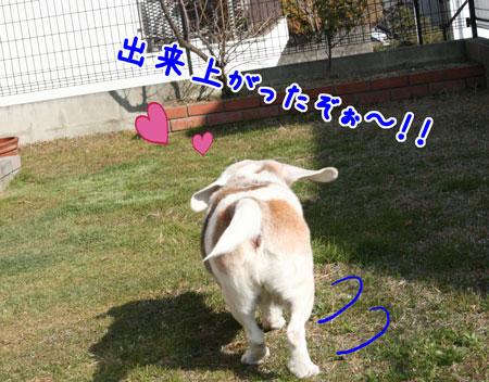 1_20100115184612.jpg