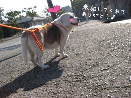 1_20100120203316.jpg