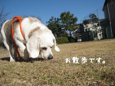 1_20100124191243.jpg