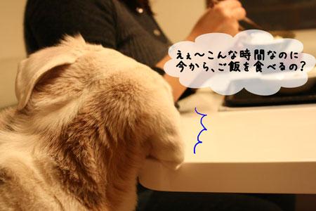 1_20100128144023.jpg
