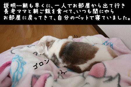 1_20100220114503.jpg