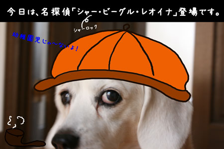 1_20100315154457.jpg