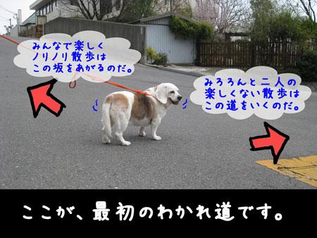 1_20100320171510.jpg