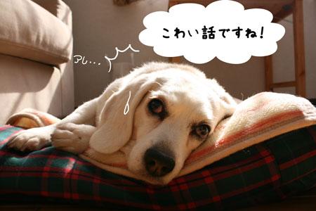 1_20100327205909.jpg