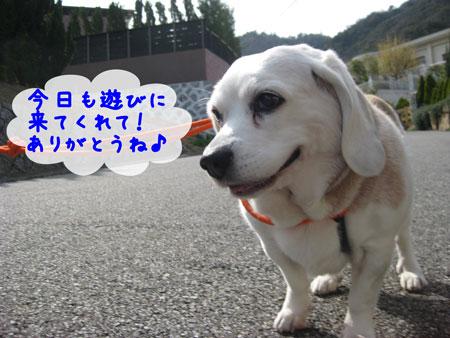 1_20100330165322.jpg