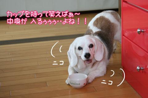 1_20100522163915.jpg