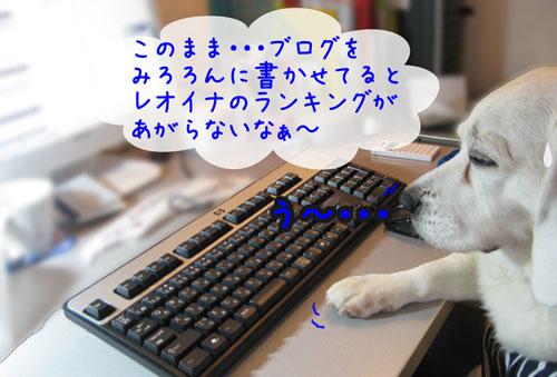 1_20100526134915.jpg