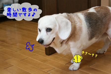 1_20100602180555.jpg