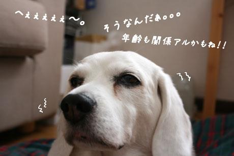 1_20100614141608.jpg