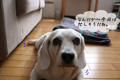 1_20100707152507.jpg