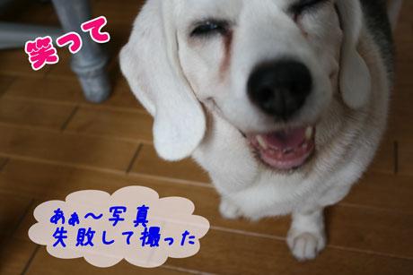 1_20100714134608.jpg