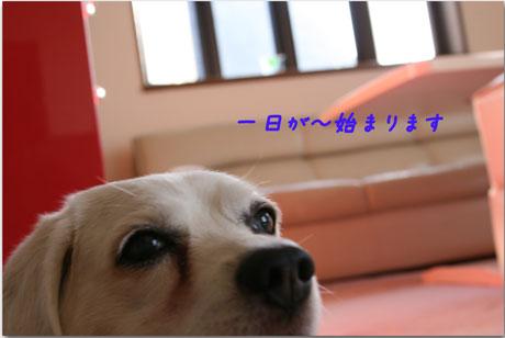 1_20100719132414.jpg