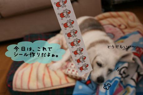 1_20101201143615.jpg