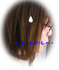 1_20110103171208.jpg
