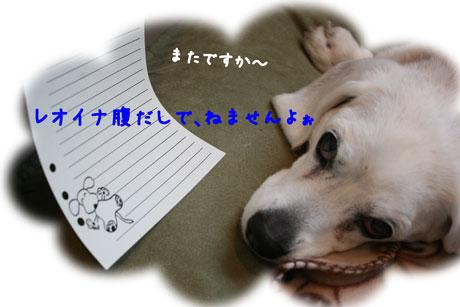 1_20110222170008.jpg