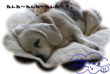 1_20110228181136.jpg