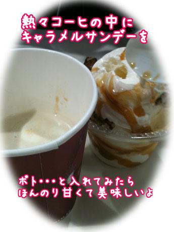 1_20110304184238.jpg