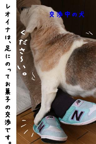 1_20110324140055.jpg