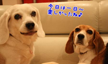 2_20091024213058.jpg