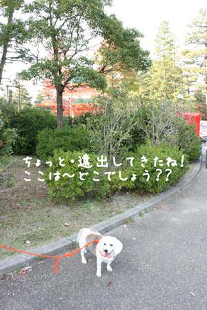 2_20091031203231.jpg