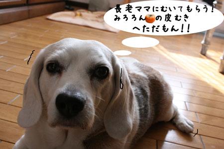 2_20091107194501.jpg