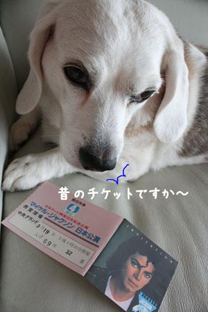 2_20091113124051.jpg
