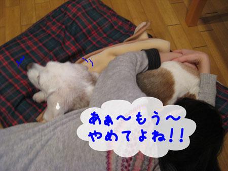 2_20091210151449.jpg