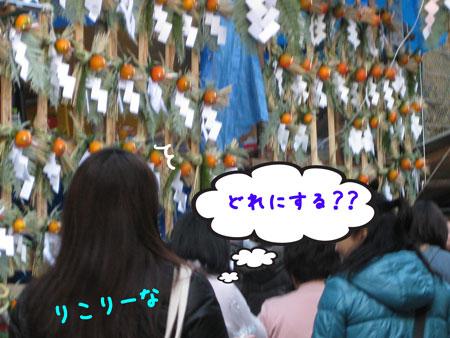 2_20091227195614.jpg