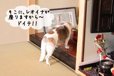 2_20100102165427.jpg
