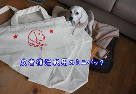 2_20100118165753.jpg