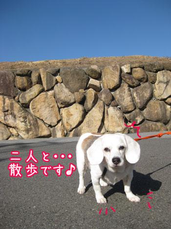 2_20100130170651.jpg