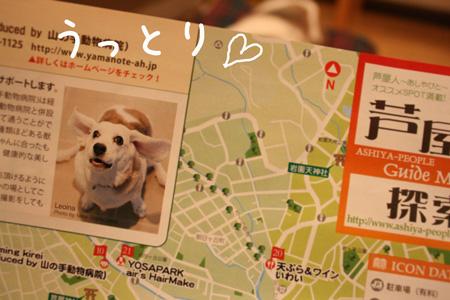 2_20100203215603.jpg
