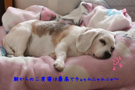 2_20100220114503.jpg