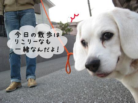 2_20100314180728.jpg