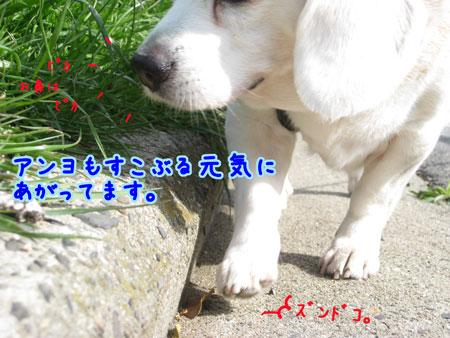 2_20100330165322.jpg