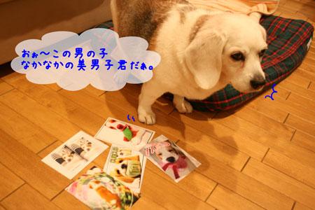 2_20100415214151.jpg