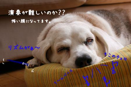 2_20100429000915.jpg