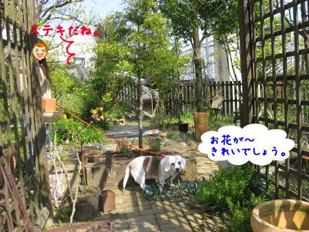 2_20100501213701.jpg