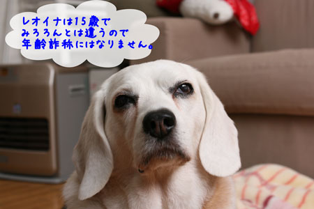 2_20100514170032.jpg