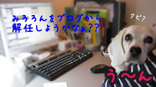 2_20100526134915.jpg