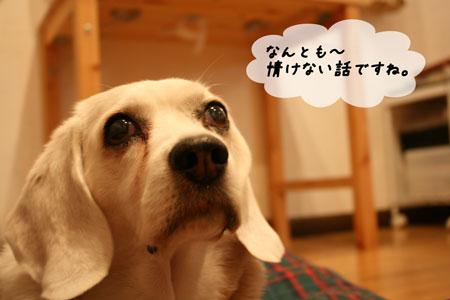 2_20100615211241.jpg